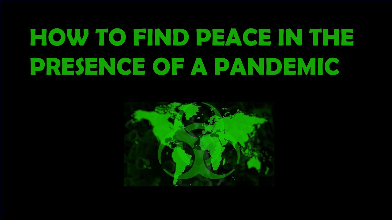 How to find peace in the presence of a pandemic.